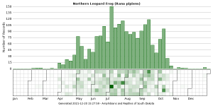 Phenology of Northern Leopard Frog (Rana pipiens)